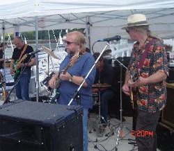 south Devon blues band